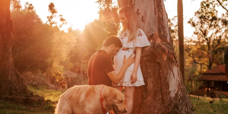 пара и собака
