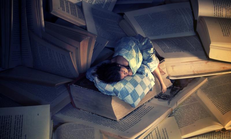 сон на книгах