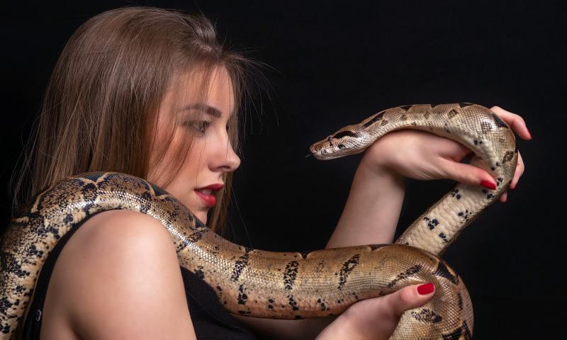 змея женщина
