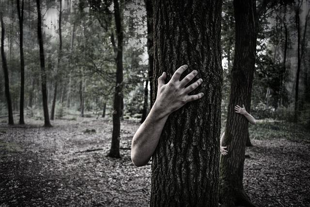 руки деревья